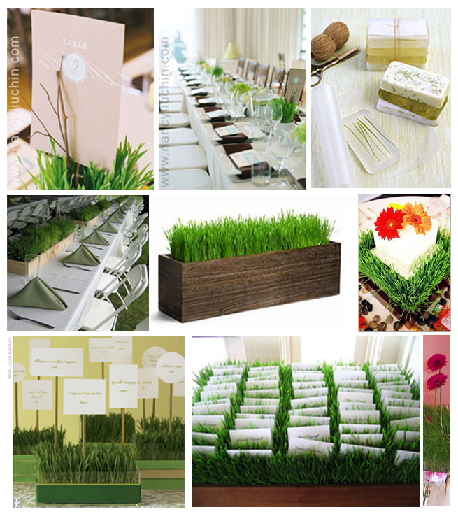 Home Decorating Ideas For Wedding: Growing Green Grass For Earth Day