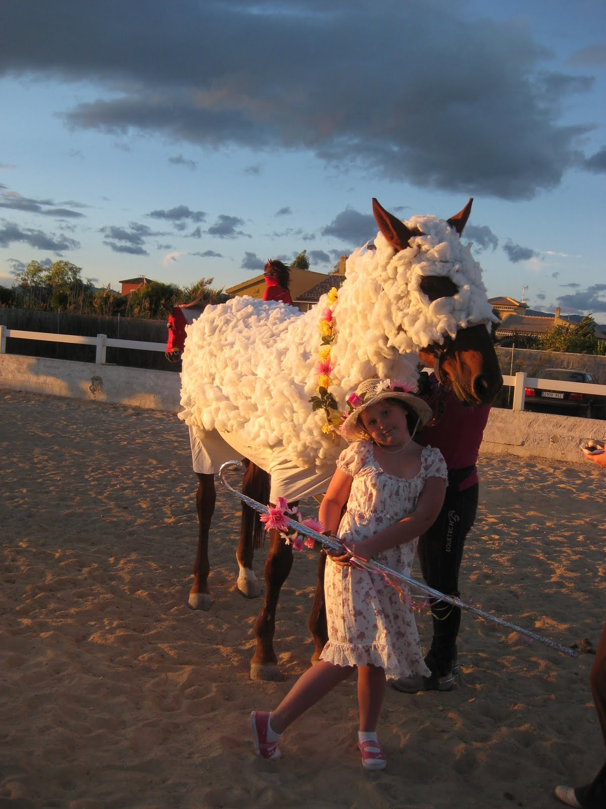 Adult Pantomime Horse 2 Man Panto Horse Fancy Dress ... |Horse Fancy Dress Costumes
