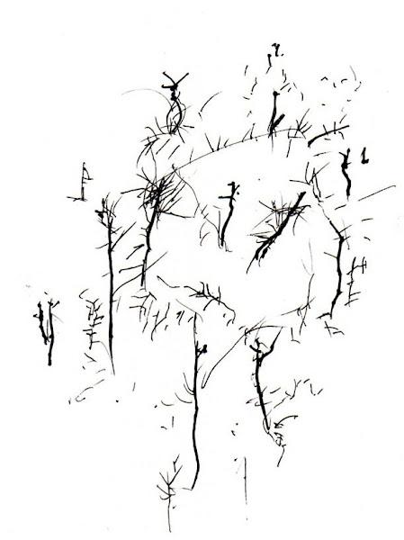 Haiku, Haibun, Tanka, Short poems
