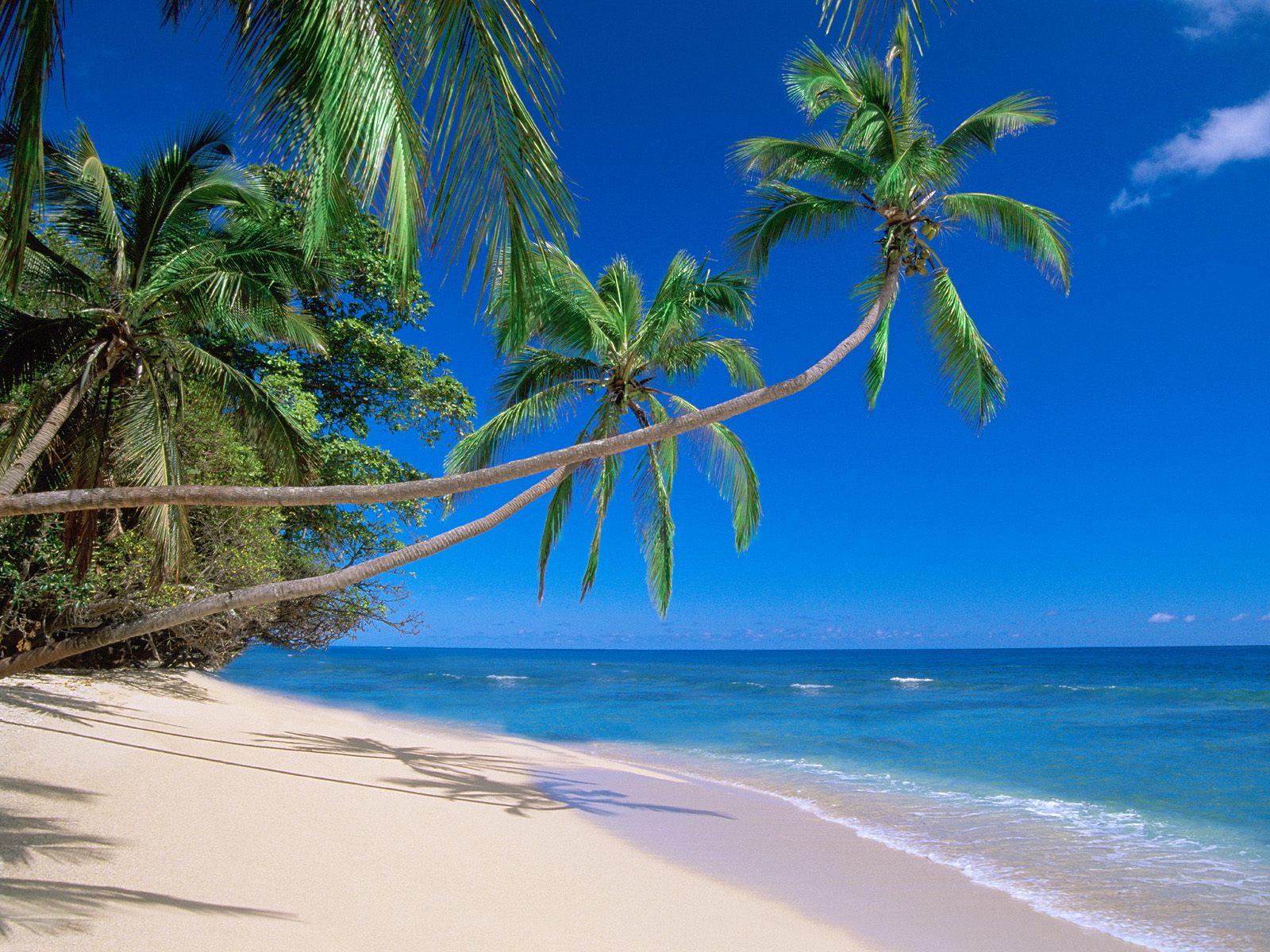 Pic new posts wallpaper fiji islands - Fiji hd wallpaper ...