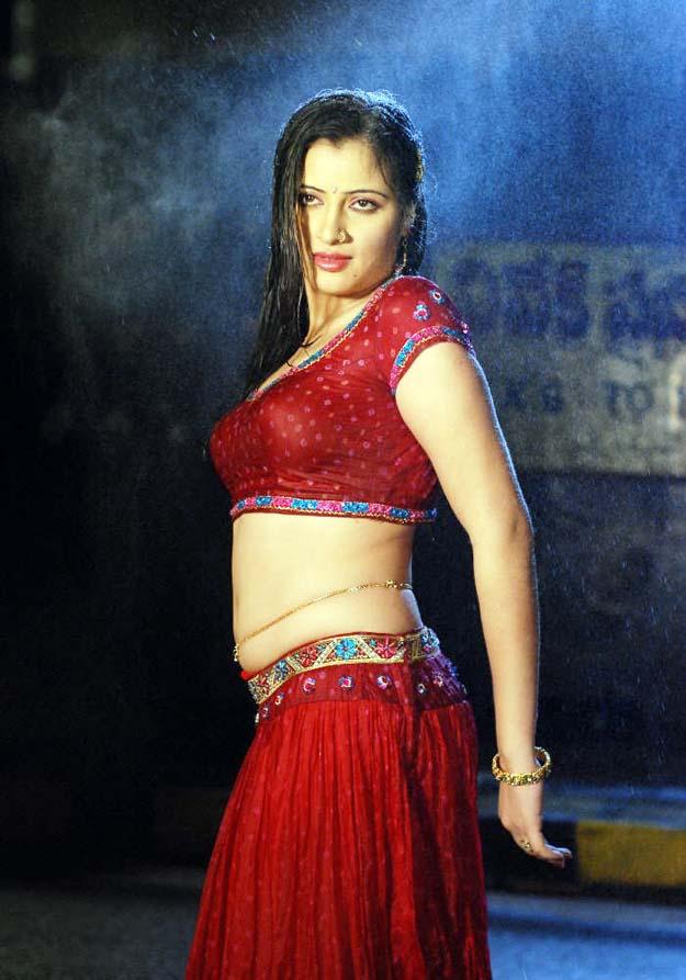 Film Actress Photos Navneet Kaur Hot Wet Navel And Boob -3307