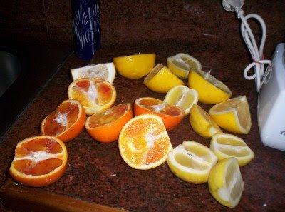 البرتقال ........بالصور 5.jpg