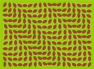 15 Ilusi Optik Menakjubkan Ilusi Mata - www.iniunik.web.id
