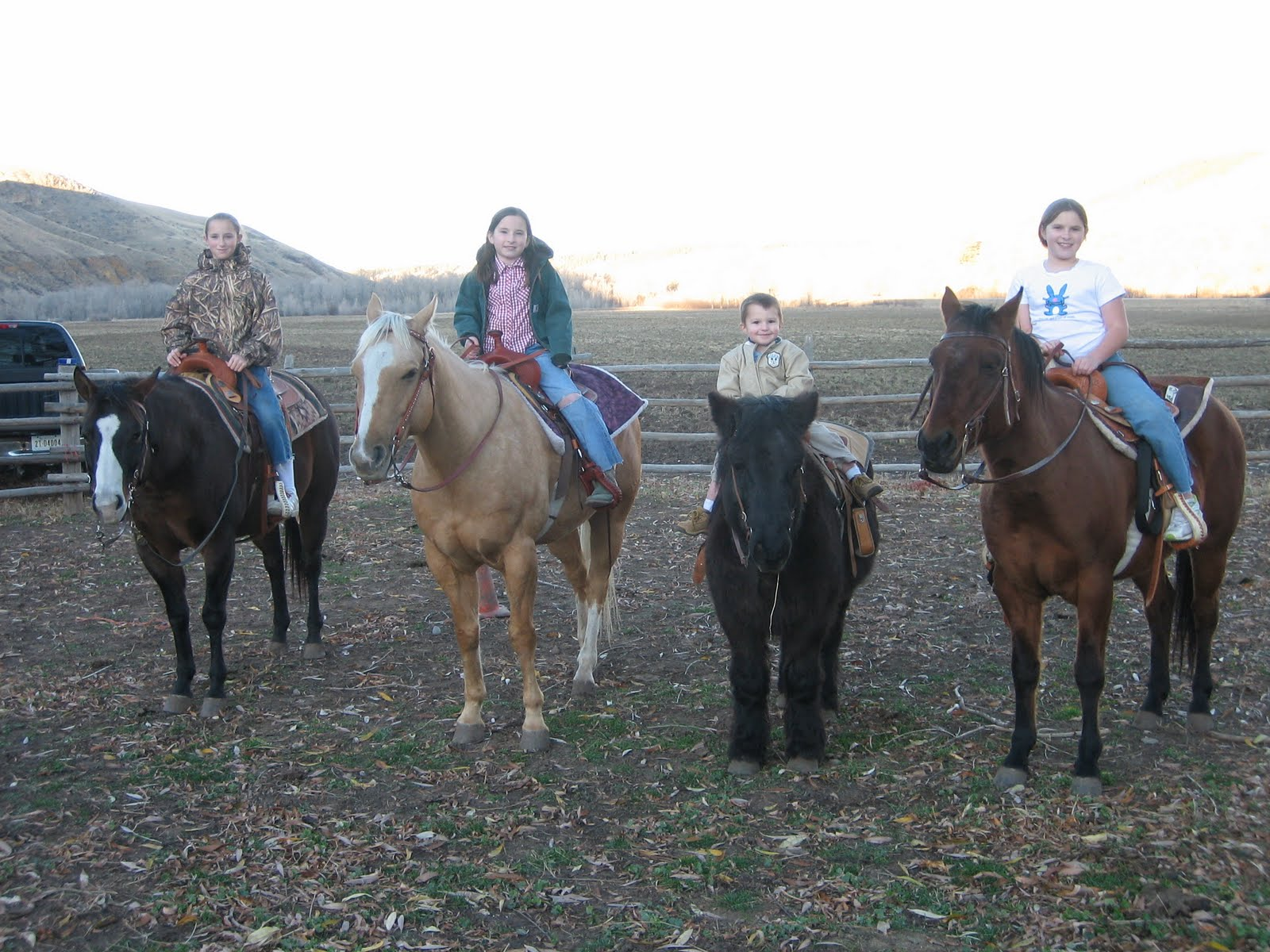 [the+whole+gang+and+horses+001.jpg]