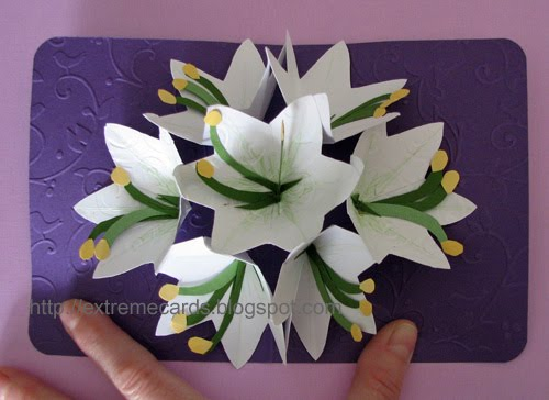 Seven flower pop up card seven flower pop up card i made mightylinksfo