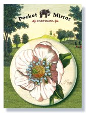 CARTOLINA POCKET MIRRORS