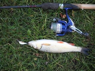 pescuit la clean cu voblere