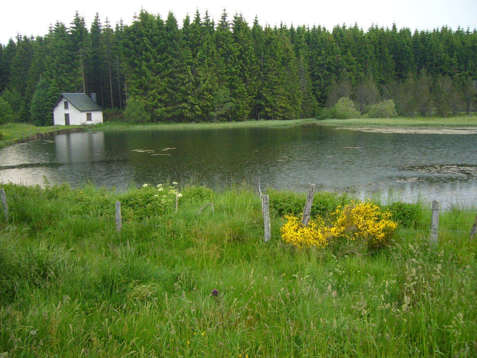 Au bord du lac elle montre son cul - 3 10