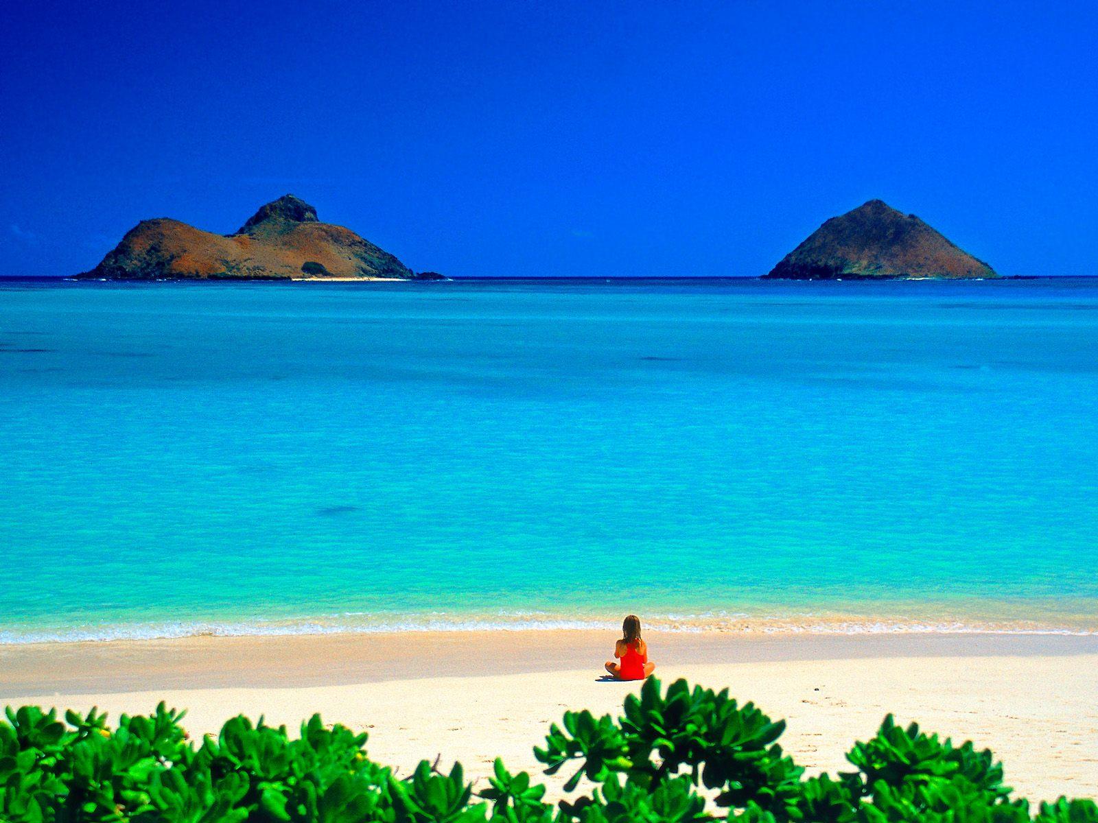 ハワイアンキルト ミントなハワイ Miu Mint Aloha 店長日記 海