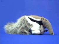 anteater plush stuffed animal