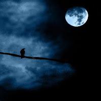 कल चौदवीं की रात थी, शब् भर रहा चर्चा तेरा कुछ ने कहा ये चाँद है, कुछ ने कहा चेहरा तेरा
