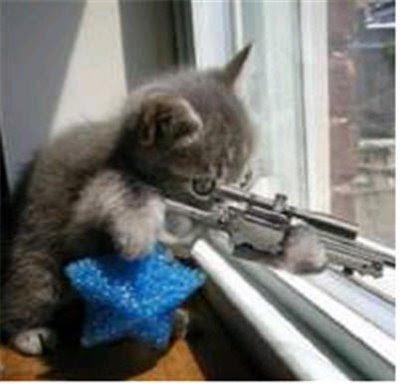 3d cat burglar fucked hard 10