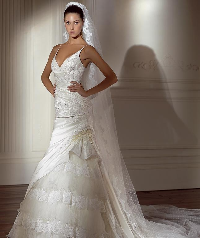 Beautiful Bride Net Gown Dress 96