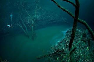sungai dalam laut