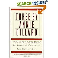 seeing by annie dillard prezi