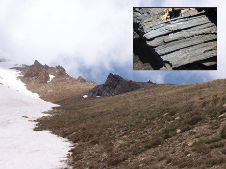 Clerical Whispers: Scientists discover wooden structure ...