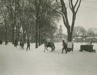A photograph of figures on skis being pulled by horses.