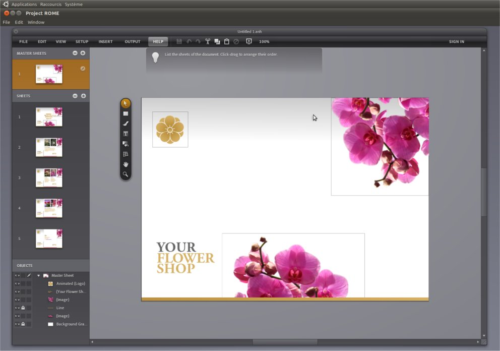 sfml installe ubuntu à partir de flash