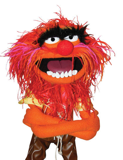 J v m the muppet coat - Animal muppet images ...