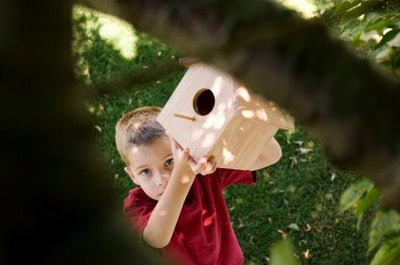 NAMC montessori summer activities woodworking boy with birdhouse