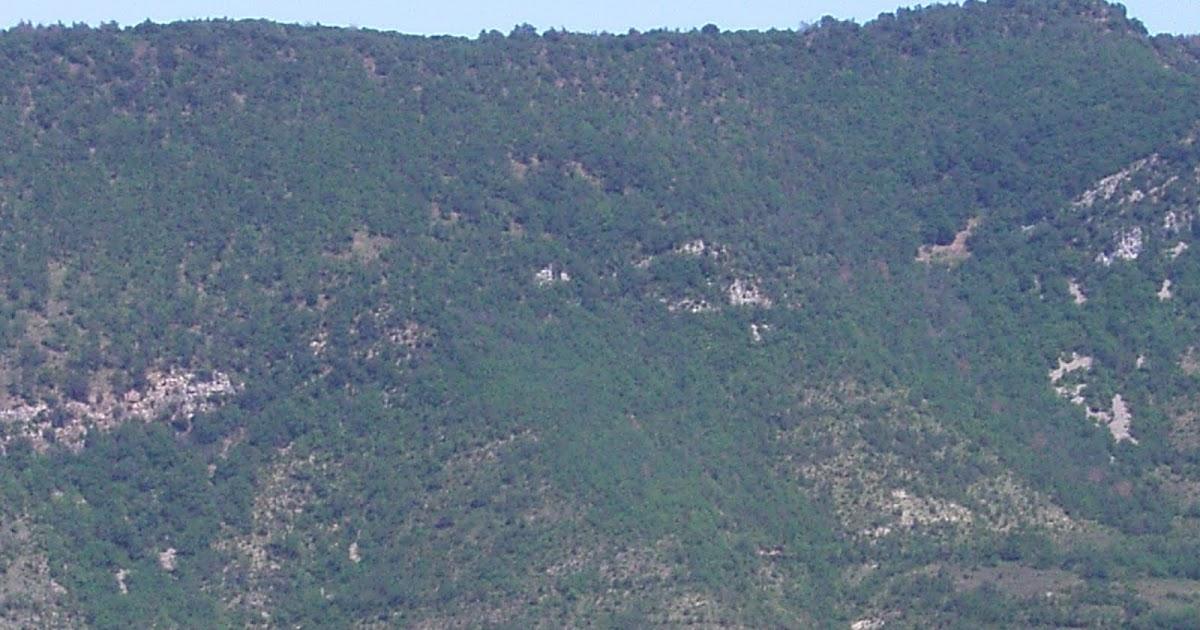 despobladosnavarra.blogspot.com