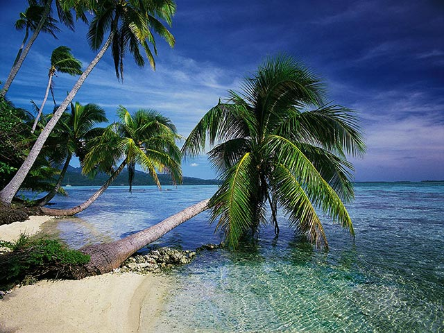 Exotic Islands: Cool Travel Pictures Tropical Island
