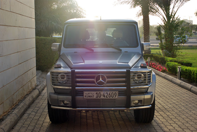 g55 amg grill