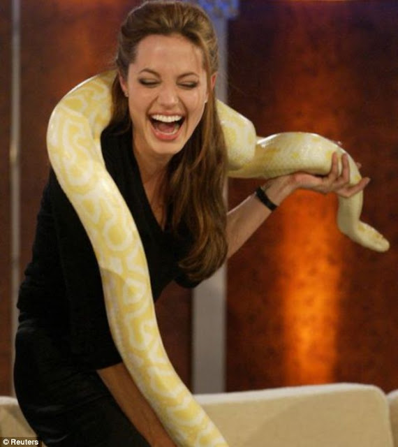 angelina jolie with a snake