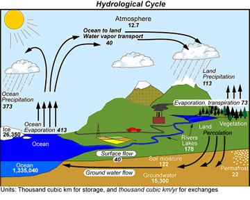 explain the dynamic relationship between man and environment