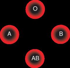 Dieta ortomolecular tipo sanguineo