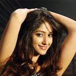 Ileana's Upcoming Film Projects