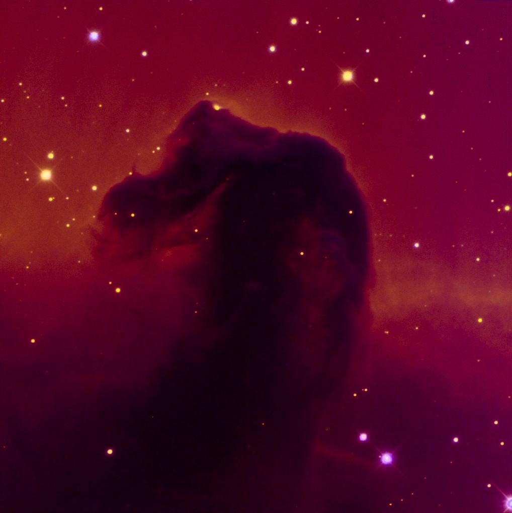 horsehead nebula pictures - 1018×1019