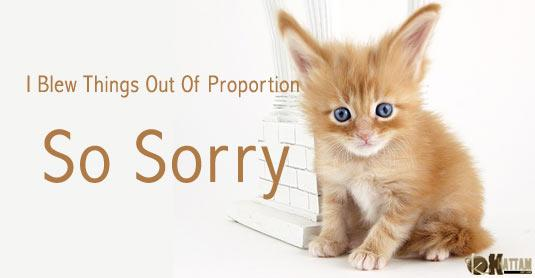 I Am Sorry Greeting Cards   Preetycasey's Blog