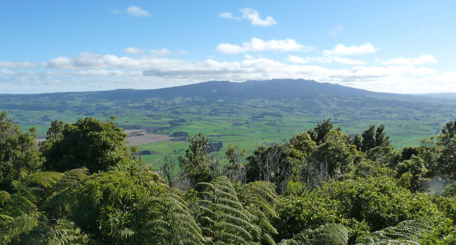 Kakepuku Mountain Walk | Gorgeous with Attitude