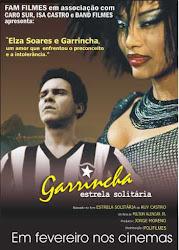 Baixar Garrincha : Estrela Solitária Dublado Grátis