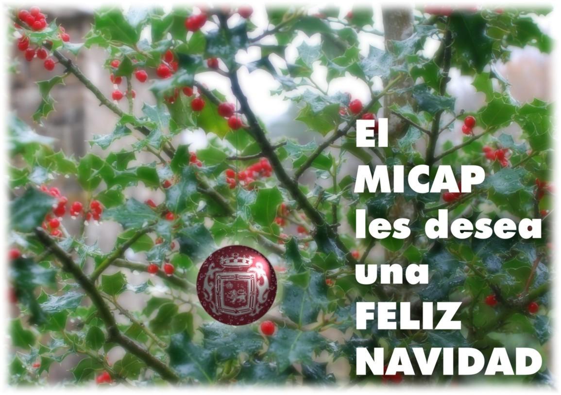 Inicio Feliz Navidad.Feliz Navidad Micap Gabinete De Comunicacion Online