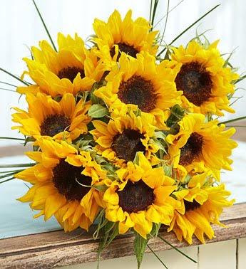 http://4.bp.blogspot.com/_Xd2tr8jvrfw/TDqjo0ZUZbI/AAAAAAAACKU/CZ5oPIbaOE4/s400/Summer+Sunflower+Bouquet.jpg