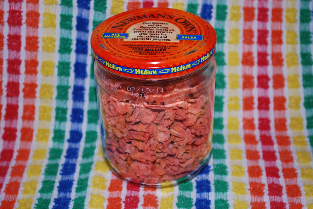 This salsa jar contains an entire 3-pound bag of carrots! Dehydrating carrots is the most efficient way to preserve carrots.