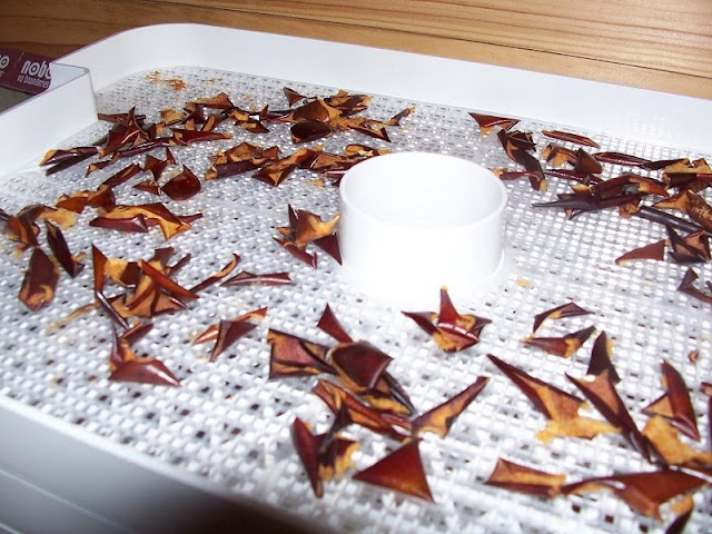 Dehydrate apple peels for easy holiday gifts.