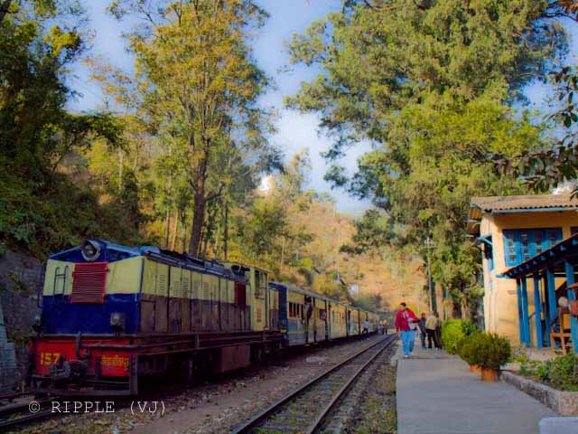 Long Wait time of Shimla-Kalka Toy Train gives enough time to appriciate the beauty of Himachal Pradesh: Posted by VJ on PHOTO JOURNEY @ www.travellingcamera.com : VJ, ripple, Vijay Kumar Sharma, ripple4photography, Frozen Moments, photographs, Photography, ripple (VJ), VJ, Ripple (VJ) Photography, VJ-Photography, Capture Present for Future, Freeze Present for Future, ripple (VJ) Photographs , VJ Photographs, Ripple (VJ) Photography : Longest wait time @ Sonwara Station : Its a beautiful place.. train stopped here for 40 minutes and I went up the hill to see other surrounding areas... There were beautiful fields with yellow mustard flowers... I came back after 25 minutes and spent 15 minutes watching people activites at railway station..