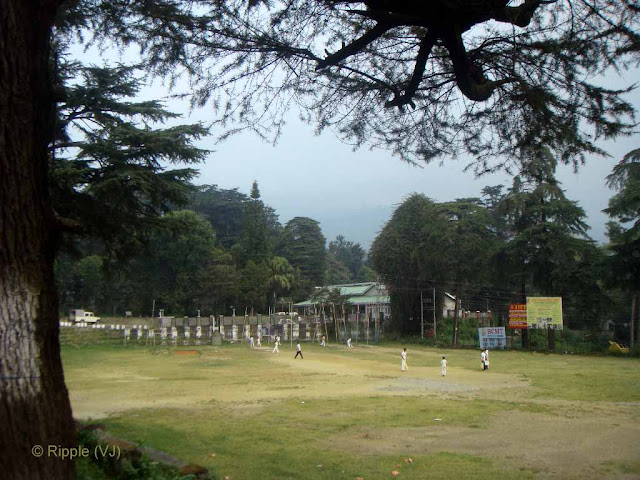 Posted by Ripple (VJ) : Palampur, Himachal Pradesh: Students playing cricket in Palampur College Ground