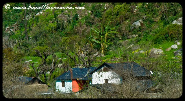 Travelling-Camera sharing a view of VILLAGES in HIMACHAL PRADESH: Posted by VJ @ www.travellingcamera.com : Himachal Pradesh is one of the states in northern India where total population lives in the villages. In fact the state has one of the highest percentages of rural population. The villagers of the state love to live in peace, tranquility and are very helpful to each other.Village in Chamba, where Bollywood movie TAAL was shot. This particular house was Aishwrya's house :)  I am sure you will be able to recall if you remember the scene where Aishwarya was training village girls...The educational status of the villages of Himachal Pradesh is very impressive. The highest literacy rates in these villages are quite high. The children in the villages get their first lessons from the government primary schools and then go on to pursue higher education in the colleges and universities established in the urban areas of the state. Though the educational status is impressive, the governmental authorities of the state are continuously taking various initiatives to further improve the status...Education has always been top area of investment every year which is a great thing in my opinion... Current Education Minister Mr. I.D.Dhiman has done a lot of work in this area but now commercialization of education has started affecting this in Himachal... Will stop here.. otherwise I will start writing about commercialization of education in Himachal :) Typical house of Himachali Villager... These are single storey, but normal trend is to have double storey home like this... In a particular village, internal architecture and design of these houses is similar. When I asked my father about the reason, he told me that in past there used to be one priest in a village who used to work as consultant for everyone while designing a house. He used to adjust different rooms as per VASTU, if its followed properly a village can't have houses with different layouts...The Economic, Educational and Industrial strength of the state largely depends on the villages of Himachal Pradesh. They are also the center of the state's cultural and traditional activities... people in the villages are keen on preserving their rich heritage intact.A village in the center of Agriculture land around...Agriculture is the principal occupation of a majority of people in the villages of Himachal Pradesh. Most of the state is mostly hilly and hence the type of cultivation is terraced. A majority of the villagers fall in the category of small and marginal farmers. Horticulture and vegetable cultivation is a major part of agricultural activities in the state. The major crops cultivated in the villages of Himachal Pradesh include wheat, maize, paddy, gram, sugarcane, mustard, potato, vegetables, barley, beans, etc.