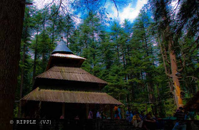 Top view of Hadimba Temple @ Manali, HP: Posted by Ripple (VJ) : ripple, Vijay Kumar Sharma, ripple4photography, Frozen Moments, photographs, Photography, ripple (VJ), VJ, Ripple (VJ) Photography, Capture Present for Future, Freeze Present for Future, ripple (VJ) Photographs , VJ Photographs, Ripple (VJ) Photography :