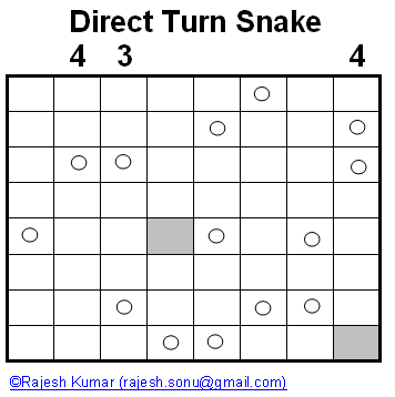 Direct Turn Snake Puzzle