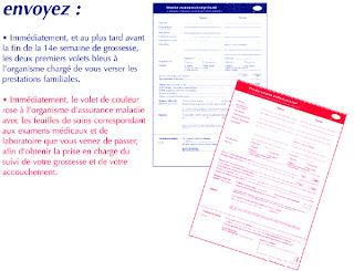 La Paperasse - La Déclaration de Grossesse