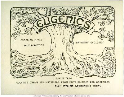 Understanding eugenics in cloning