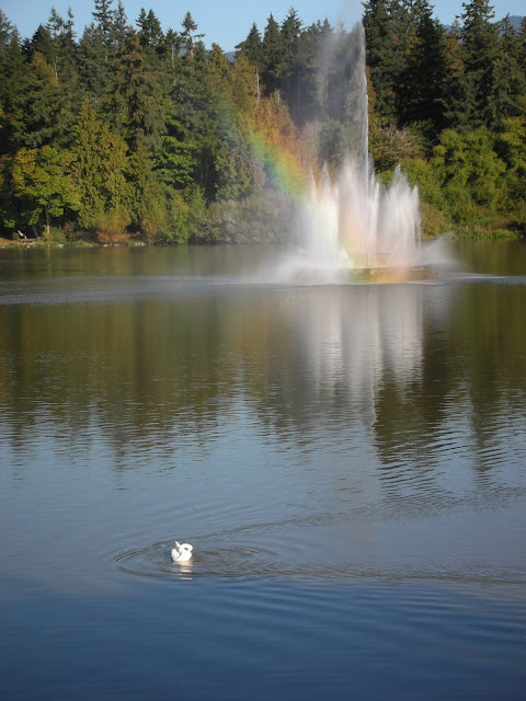 Swan with Rainbow