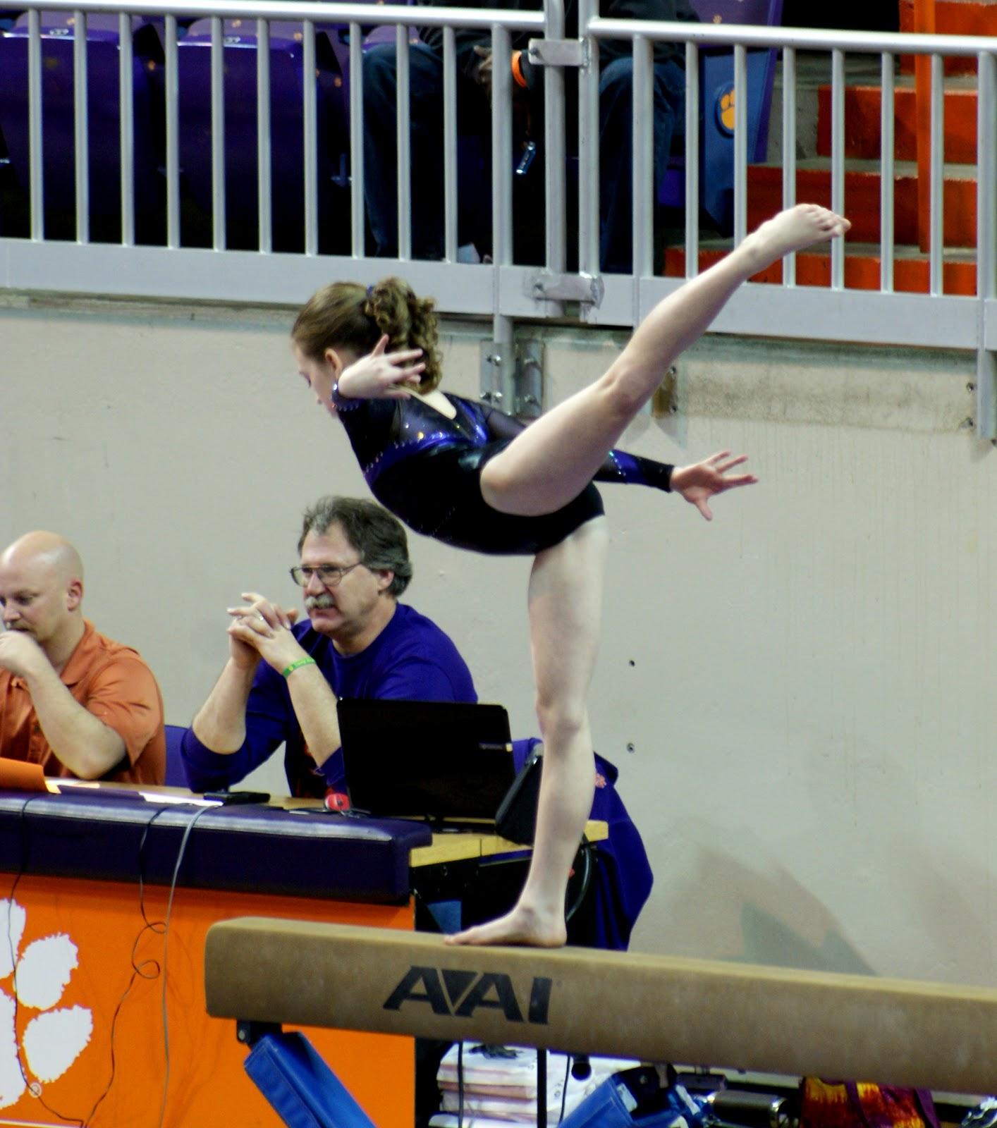 tiger paw gymnastics meet