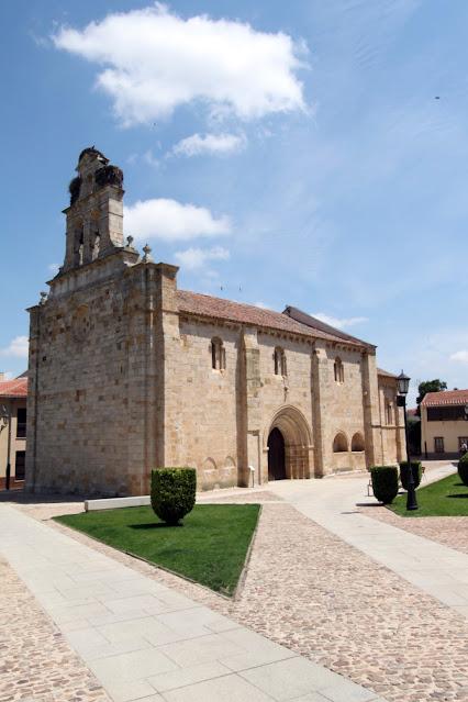 Cicogna su una chiesa-Zamora