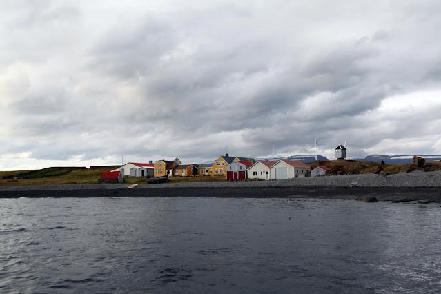 Isola di Vigur